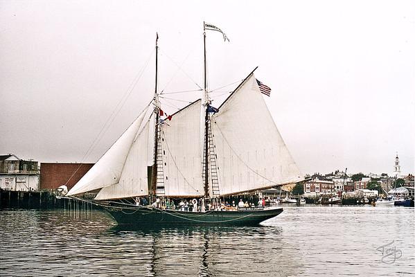Gloucester Harbor - the Schooner Thomas Lannon