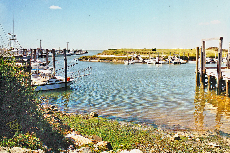 Brewster Harbor