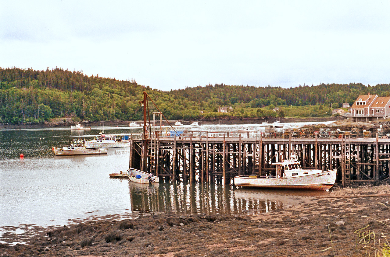 Cutler, Maine - Harbor 2 -