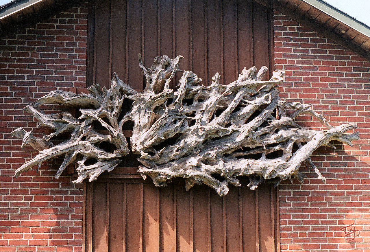 Campobello Island, New Brunswick - Roosevelt Estate - <br /> <br /> natural driftwood sculpture