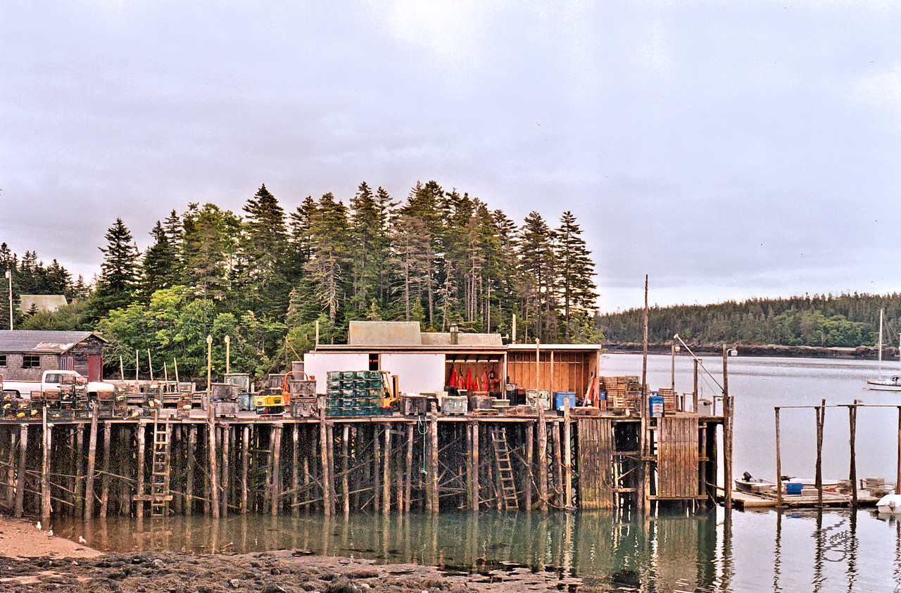 Cutler, Maine - Harbor 4
