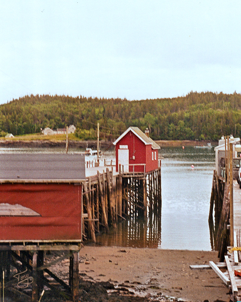 Cutler, Maine - Harbor 3 -