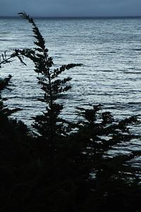 Big Sur Aug29_30 27 of 63