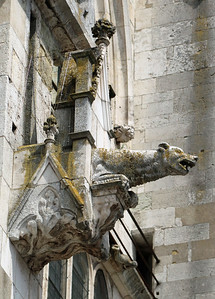 A gargoyle on the cathedral....see previous picture to find them on the walls.