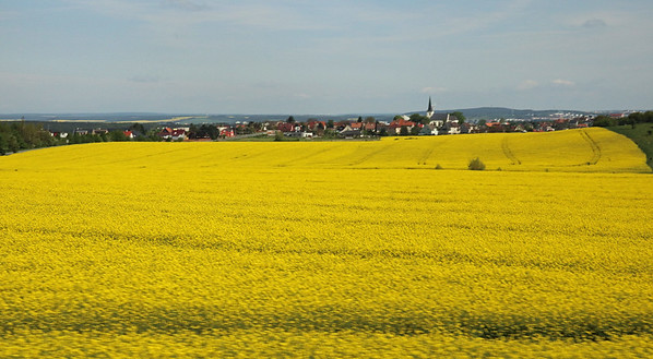 Once out of town, we encountered many bright fields of rape which is used to make canola oil.  This is the little town of Litice in the Czech Republic.