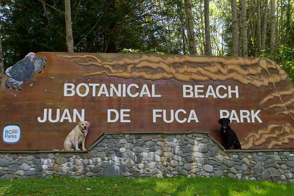 Botanical Beach