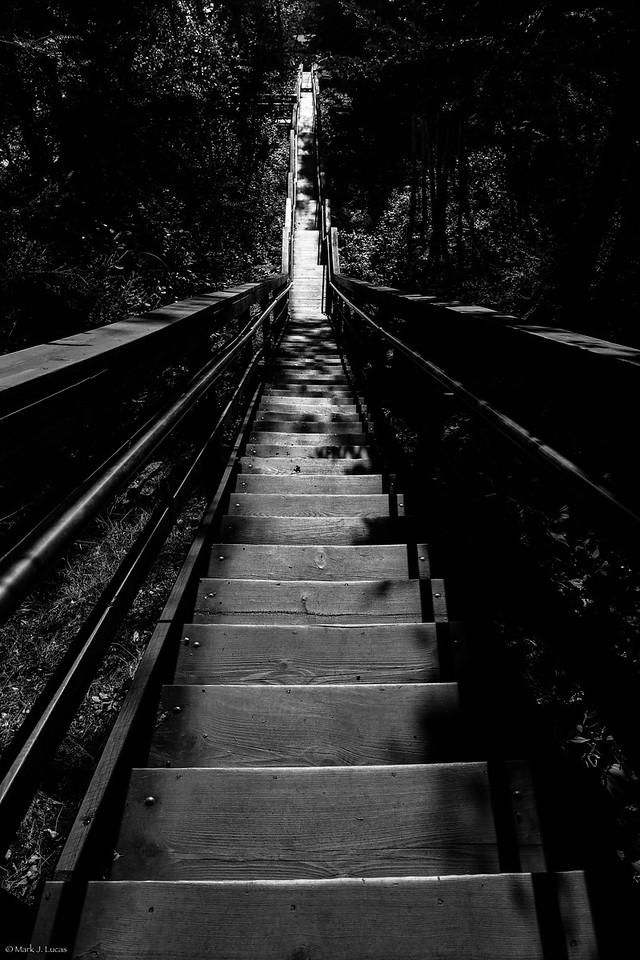 © Mark J. Lucas