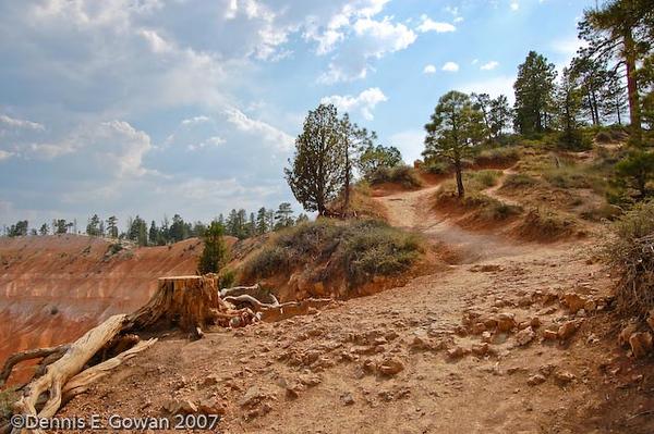 Bryce Canyon-5