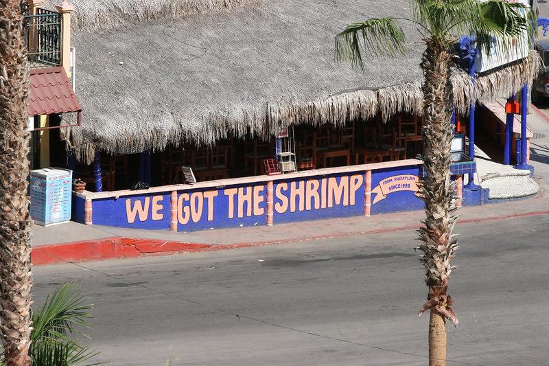 Where can I get some shrimp?