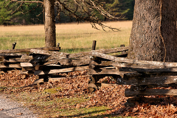Cades Cove, TN on 11/17 and 19/09