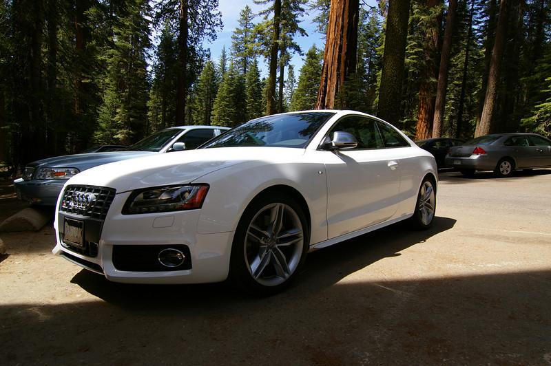 mmm, Audi S5
