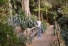 San Diego<br /> Wild Animal Park