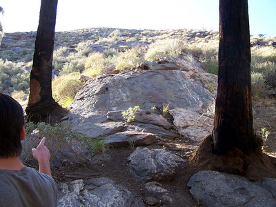 Indian Canyon: Dan points up at the rocks.