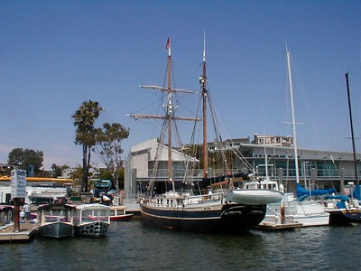 Balboa -- Boats in their docks.