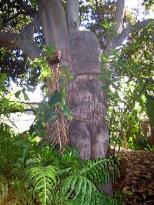 Los Angeles Arboretum.
