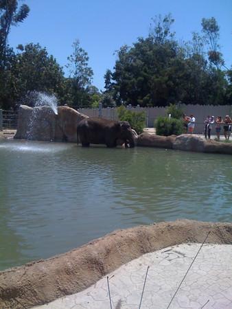 California July 2011