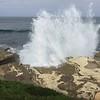 Tidal Scenery @ Point La Jolla [Seawatch]