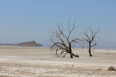 June 24, 2012 (Salton Sea [off intersection of Boyle & Young Roads] / Calipatria, Imperial County, California) -- some desolate landscape with Obsidian Butte in background