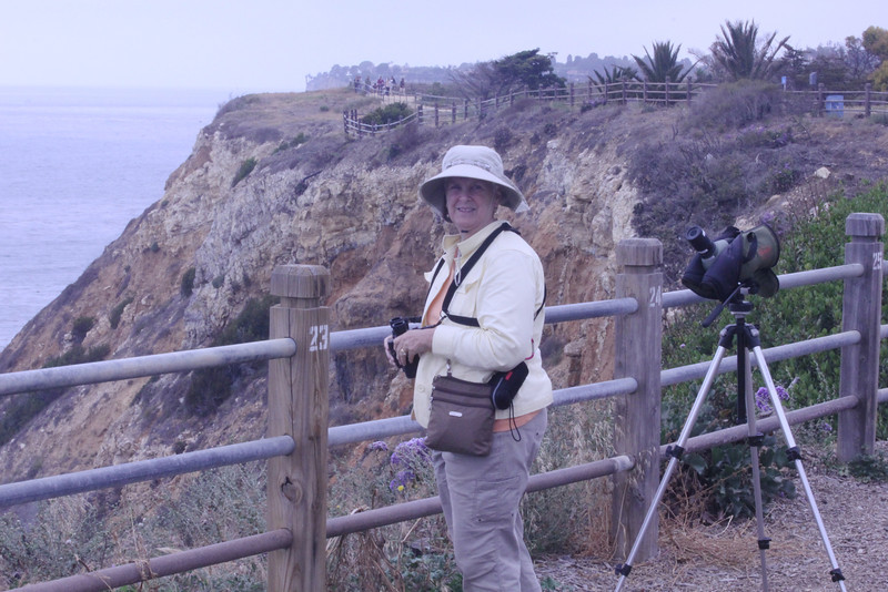 June 22, 2012 (Point Vicente Interpretive Center / Rancho Palos Verdes, Los Angeles County, California) -- Mary Anne