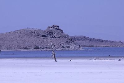 June 24, 2012 (Salton Sea / Niland, Imperial County, California) -- Red Hill behind dead tree on salt beach