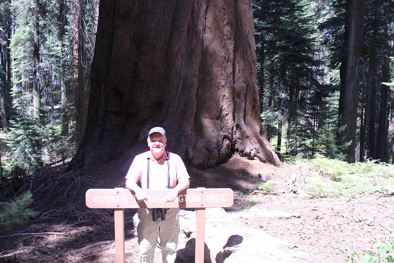 "June 28, 2012 (Crescent Meadow Road / Sequoia National Park, Tulare County, California) -- David in front of the ""Booker T. Washington"" Sequoia tree"