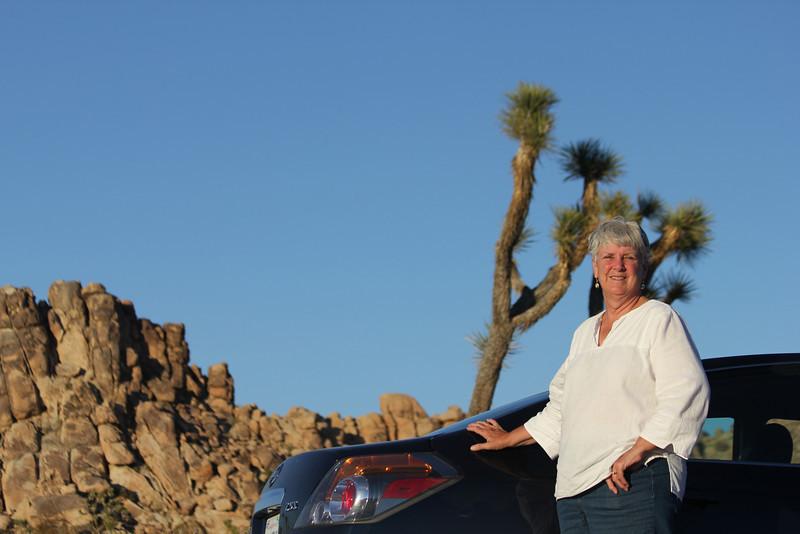 June 24, 2012 (Joshua Tree National Park [on Park Road] / Joshua Tree, San Bernardino County, California) -- Mary Anne, Joshua Tree, Rock formation