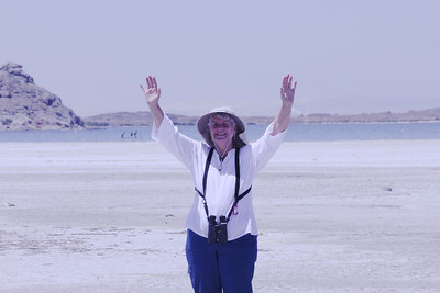 June 24, 2012 (Salton Sea [from Red Hill looking towards Obsideon Butte] / Niland, Imperial County, California) -- Mary Anne [maybe it's just too hot at 103 degrees)