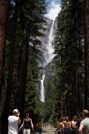 Yosemite Valley (Waterfalls and More)