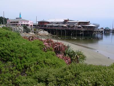 Fisherman's Wharf Monterey 7/22/08