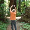 Nancy took a photo of me trying to capture the size of this forest.