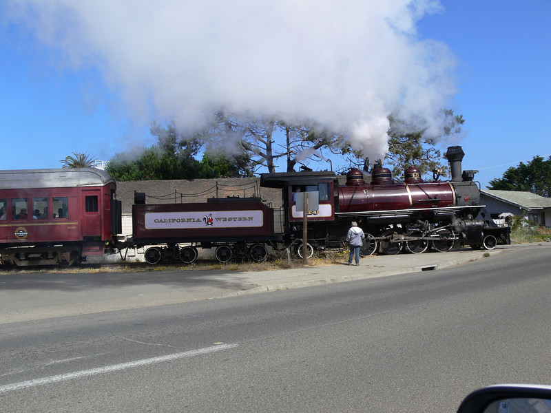 The Skunk Train surprised us by blowing its steam whistle as we were leaving the hotel on the way to Avenue of the Giants. What a wonderful train it is. This train climbs over the  mountains from the coast to see the big trees.