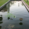 Decorative pool of water at Angkor National Museum
