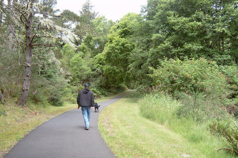 Craig and Molly on a long walk