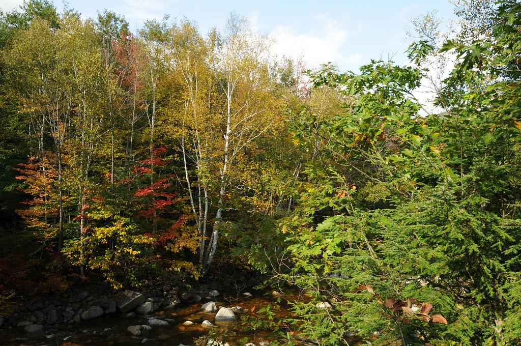 CamptonNH_20081004_019