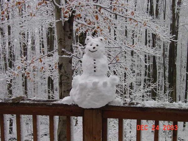 kurt and kyle built a snow BEAR