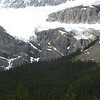 What's left of the Crowfoot Glacier. One toe is missing now.
