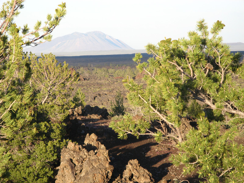 This area has active lava flows and grows every year.
