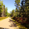 """Bike ride in Kouchibouguac National Park N.B.  Many nice biking trail in this park.  Informational Links:  <br /> <a href=""""http://www.pc.gc.ca/pn-np/nb/kouchibouguac/index.aspx"""">http://www.pc.gc.ca/pn-np/nb/kouchibouguac/index.aspx</a><br /> <a href=""""http://en.wikipedia.org/wiki/Kouchibouguac_National_Park"""">http://en.wikipedia.org/wiki/Kouchibouguac_National_Park</a>"""
