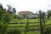019 Sonnenberg Rose Garden