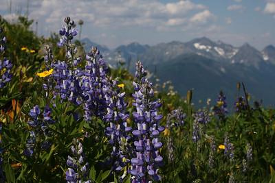 British Columbia!