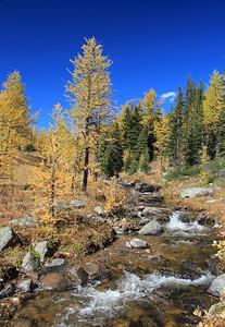 Healy Creek