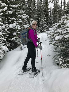 A dedicated snow shoe trail to Chester Lake.