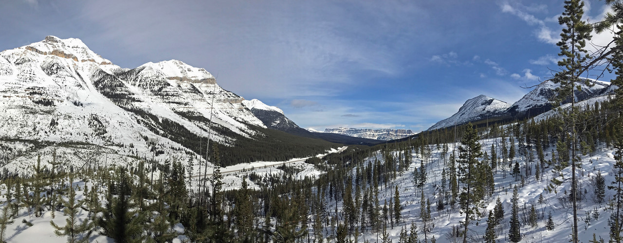 A view back towards Tunnel mountain in the distance over the end of the valley.