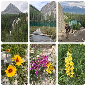 First day of hiking...to Grassi Lakes. Beautiful wildflowers along the way
