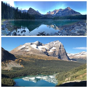 Lake O'Hara reflections...sunrise and then later in the day from the Alpine Route