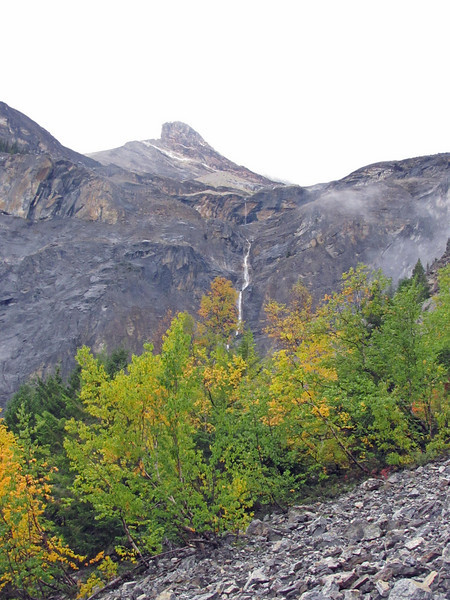 A high waterfall that starts up in the glaciers above.  We had views of this across most of Mt. Wapta.  See later.