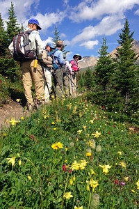Stopping to admire the flowers on the Helen Lake trail.