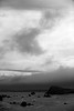 DSC_3471 Oregon coast