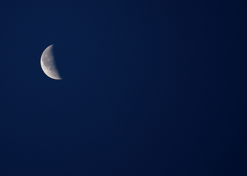 Early morning moon.