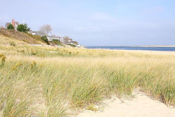 Chatham Beach